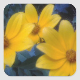 Yellow Flowersf Square Sticker