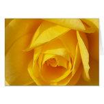 Yellow Folds Greeting Card
