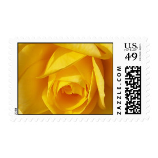 Yellow Folds Postage