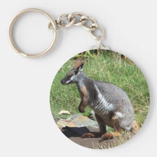 Yellow-Footed Rock Wallaby, Australia Keychain