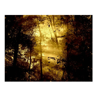 Yellow Forest Postcard