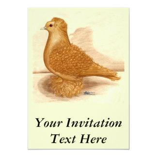 Yellow Frillback Pigeon Card