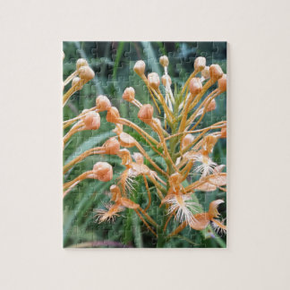 Yellow Fringed Orchid Platanthera ciliaris Jigsaw Puzzle
