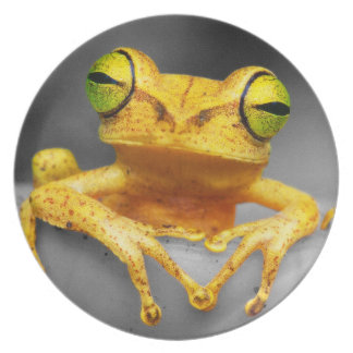 Yellow Frog Party Plate