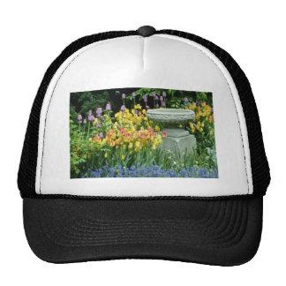 yellow Front garden of house in Westmount, Quebec, Trucker Hat