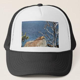Yellow Galapagos land iguana relaxing Trucker Hat