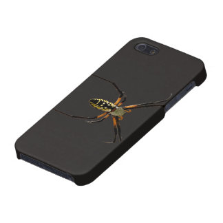 Yellow Garden Orb-Weaver Spider iPhone SE/5/5s Case