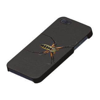 Yellow Garden Orb-Weaver Spider iPhone SE/5/5s Case