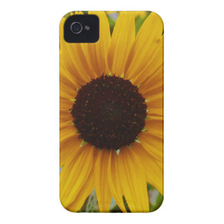 Yellow Garden Sunflower Mother's Day Case-Mate iPhone 4 Case