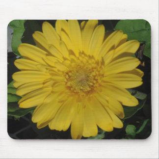 Yellow Gerber / Gerbera Daisy Mouse Pad
