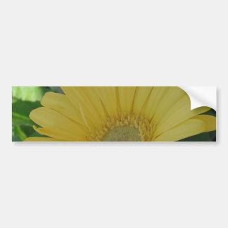 Yellow Gerber /  Gerbera Disiy Bumper Sticker