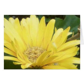 Yellow Gerber Note Card