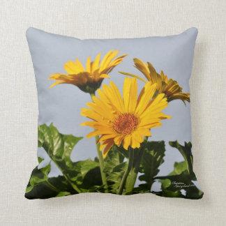 Yellow gerbera daisies Pillow