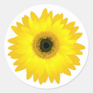 Yellow Gerbera Daisy Classic Round Sticker