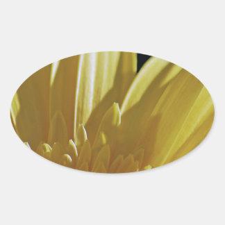 Yellow Gerbera Daisy Oval Sticker