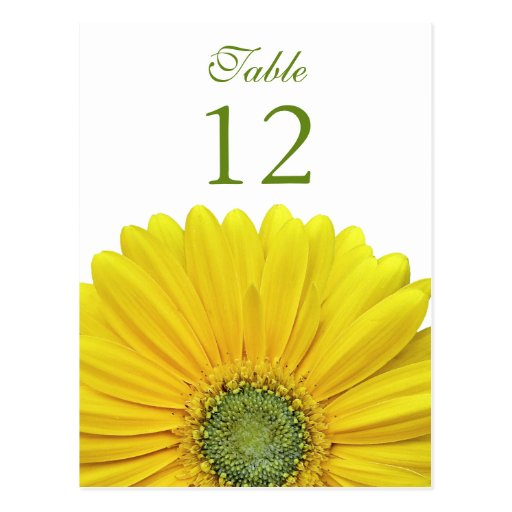 Yellow Gerbera Daisy Table Number Card Postcards