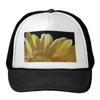 Yellow Gerbera Daisy Trucker Hat