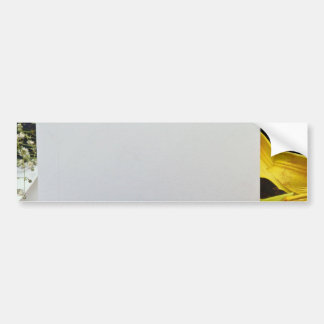 yellow Gift card and flowers flowers Bumper Stickers