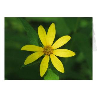 Yellow Glory Card