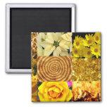 Yellow / Gold Photos Collage Fridge Magnet