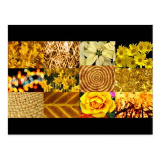 Yellow / Gold Photos Collage Post Cards