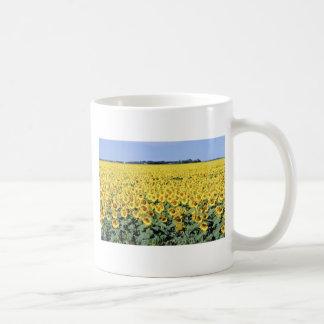 yellow Golden field of sunflowers, Manitoba flower Classic White Coffee Mug