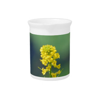 Yellow Golden Rod Beverage Pitchers