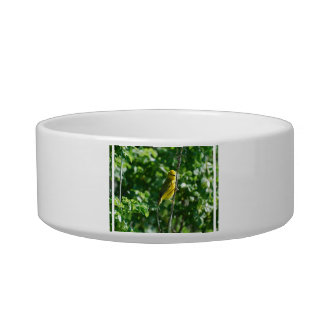 Yellow Goldfinch Pet Water Bowl