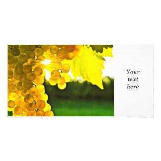 Yellow grapes card