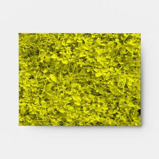 Yellow Grass Envelope