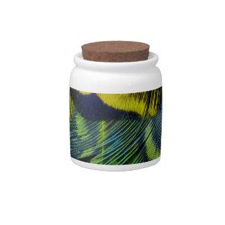 Yellow Green Bright Bird Feathers Candy Jar