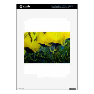 Yellow Green Bright Bird Feathers Skin For iPad 3