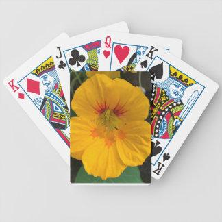 Yellow Hawaiian Flower Deck of Cards - Aloha!