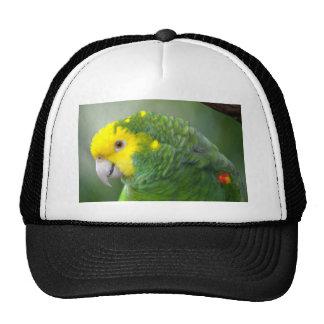 Yellow Headed Amazon Trucker Hat