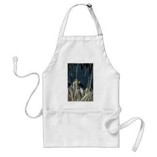 Yellow-headed blackbird apron