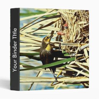 Yellow-headed Blackbird feeding young 3 Ring Binders