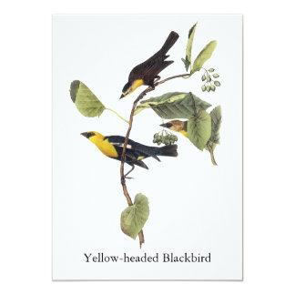 Yellow-headed Blackbird - John Audubon Card