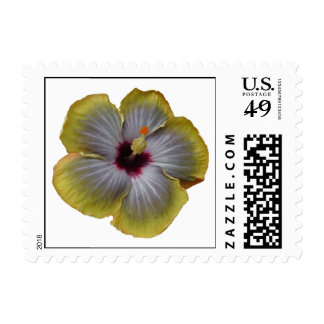 yellow hibiscus aloha flower stamps