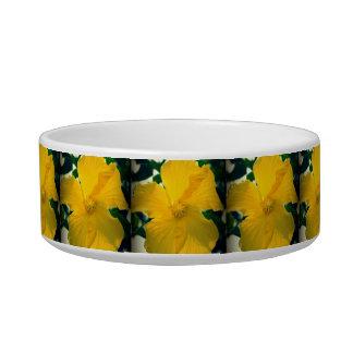 Yellow Hibiscus Bowl
