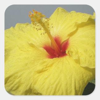 Yellow Hibiscus Flower Address LAbel Square Sticker