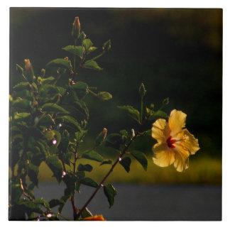 Yellow Hibiscus Flower Bush Tile