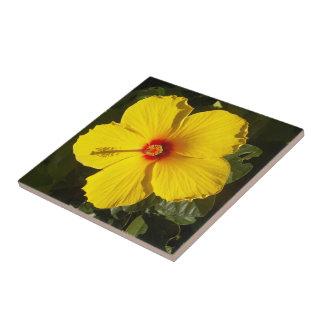 Yellow Hibiscus Flower Ceramic Tile