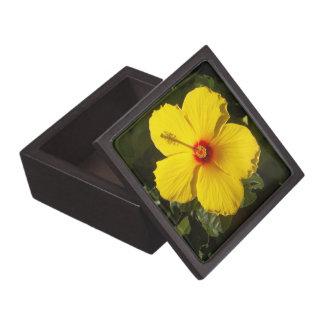 Yellow Hibiscus Flower Gift Box