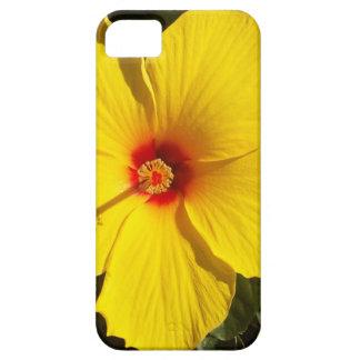 Yellow Hibiscus Flower iPhone SE/5/5s Case
