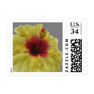 Yellow Hibiscus Flower Painting Postage