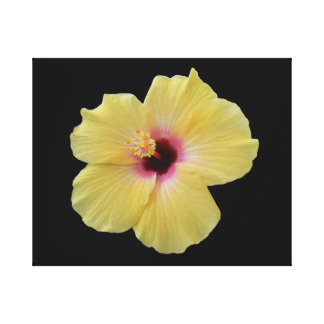 Yellow Hibiscus Flower Wrapped Canvas Stretched Canvas Print