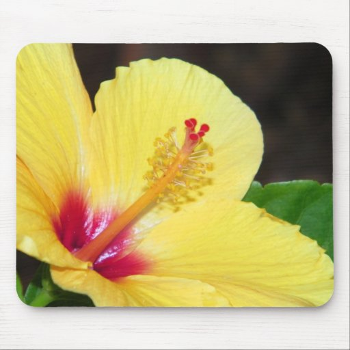 Yellow Hibiscus Mousepad