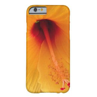 Yellow Hibiscus Phone Case