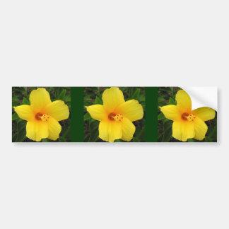 Yellow Hibiscus Photo Art Bumper Sticker