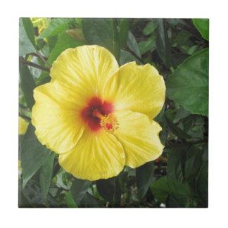Yellow Hibiscus Plant Art Items Tile